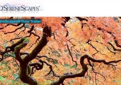 HDSereneScapes